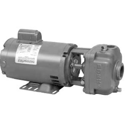 Burks Boiler Feed water Pumps